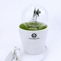 花火小夜灯 新年送礼礼品 创意浪漫情侣 花火盆栽 LED台灯